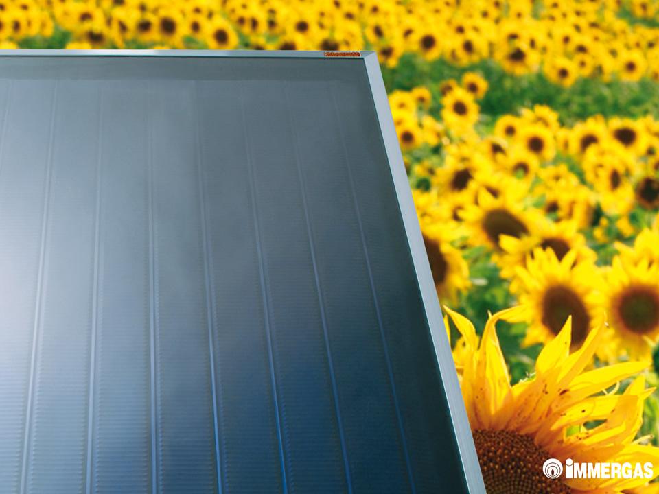 Pannello Solare Immergas : Immergas